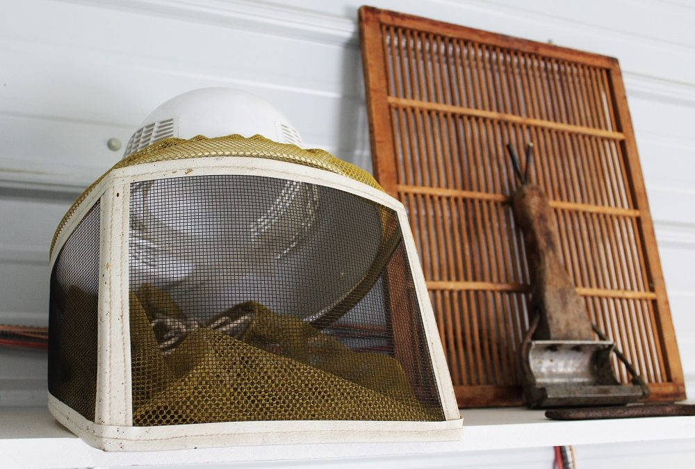 Our Family's Beekeeping History