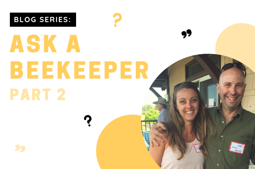 Ask a Beekeeper: Part 2