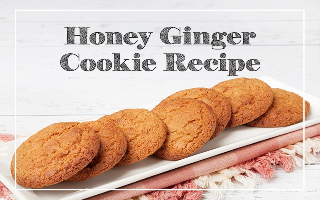 Honey Ginger Cookie Recipe