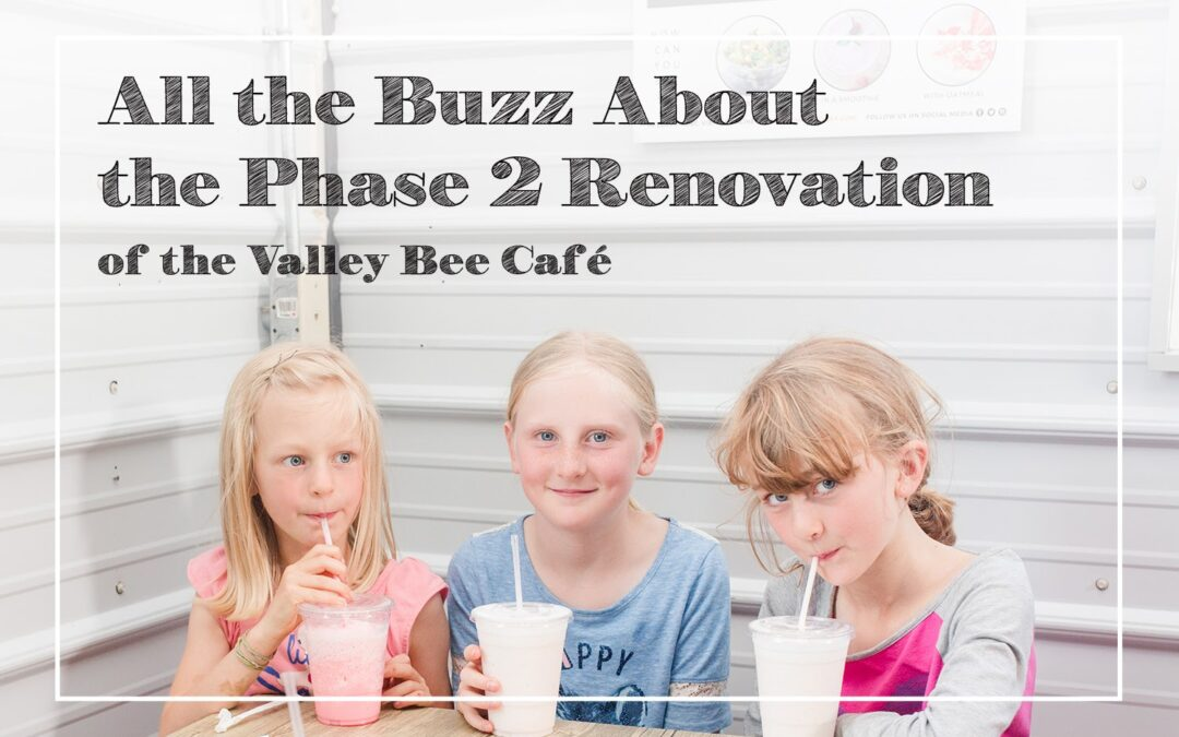 All the Buzz About the Phase 2 Renovation of the Valley Bee Café