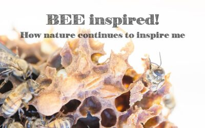 BEE inspired! How nature continues to inspire me